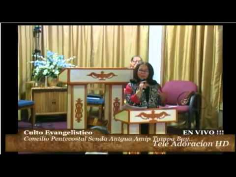 Culto Evangelistico Concilio Pentecostal Senda Antigua, Amip Tampa Bay.. 08-02-2015