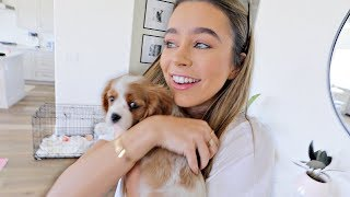 SURPRISING MY GIRLFRIEND WITH A NEW PUPPY!!!