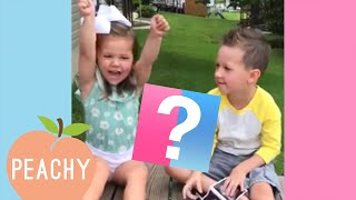 You Will Love These Funny and Adorable Reactions | Gender Reveal 2019