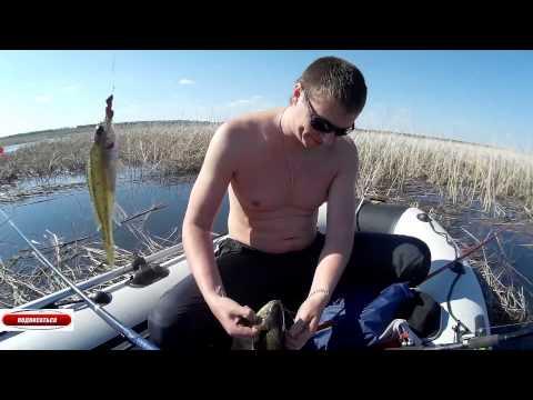 рыбалка в ордынке харьковской области