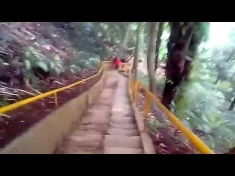 download lagu Taman Botani Sukorambi Jember gratis