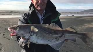 Bristol Channel Beach Fishing. Early Season Cod and Bass. March 2019