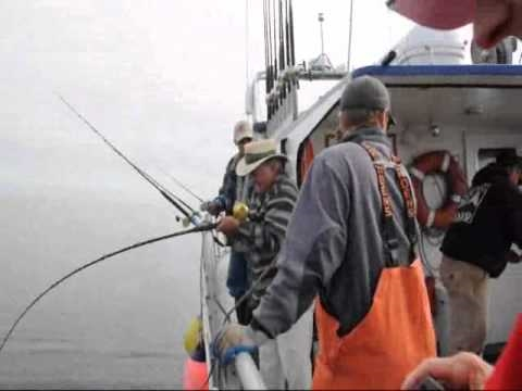 Deep sea Fishing... Kodiak Alaska  Fishing Report and Video