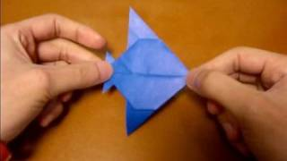 Origami Angelfish