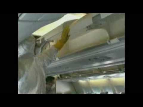 Rats found under business class seat on Hong Kong plane
