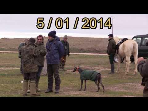 GALGOS   ( COPA DE ZAMORA )     05 - 01 - 2014