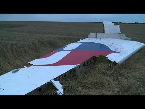 Flight MH17 hit by numerous 'high energy objects': probe