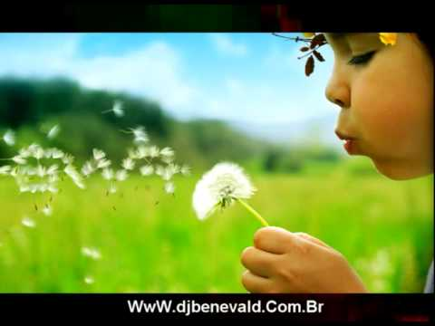 Di Paullo e Paulino - Amor de Primavera - (REMIX) Ft. dj benevald...