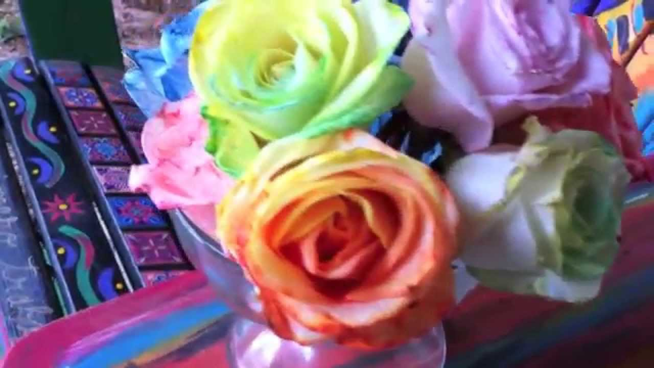 How to tie dye roses diy rainbow roses and flowers for How to color roses rainbow
