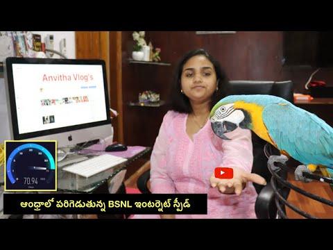 BSNL Internet Speed in Andhra Pradesh and My Telugu Talking Macaw Max   Internet in India #Broadband