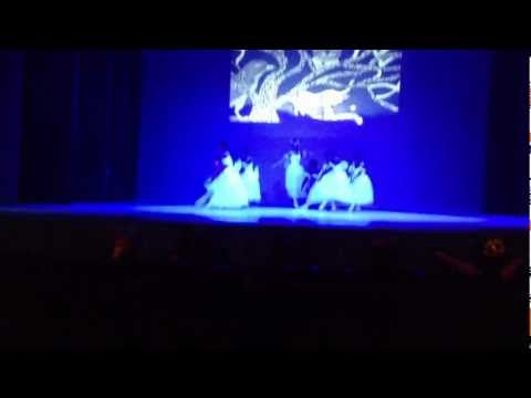 """Art in motion"" 2013 Da Vinci academy, Aruba (ballet)"