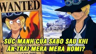 Tổng tham mưu trưởng quân cách mạng Sabo sau khi sở hữu Mera Mera nomi mạnh ra sao? | Top Anime
