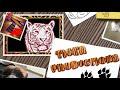 CRAZY CATS vs PAPER, get [video]