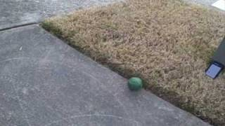 Bocce Ball Trick Shot | Legendary Shots