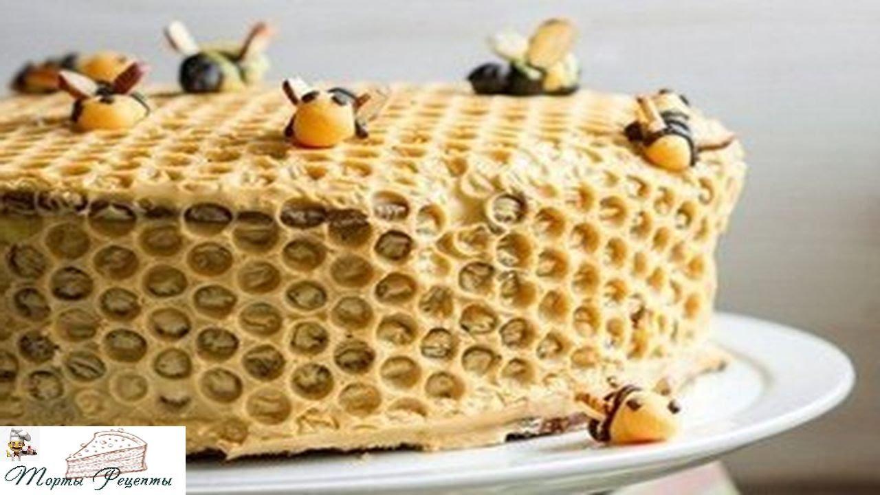 Торт медовые соты с вишней рецепт пошагово в духовке