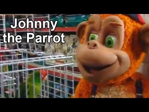 Kofiko and Johnny The Parrot, Eng