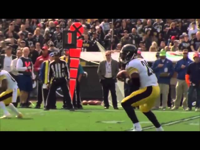 Pittsburgh Steelers 2014-2015 Hype