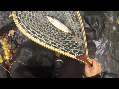 Fly Fishing New Jersey, Catching Big Fish in the Rain
