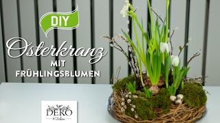DIY: hübscher Osterkranz mit Frühlingspflanzen [How to] Deko Kitchen