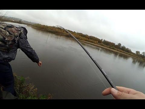бабье летига рыбалка