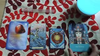 Mensagem dos reinos mineral, animal, vegetal e espiritual 💎🌿 Libra a Peixes