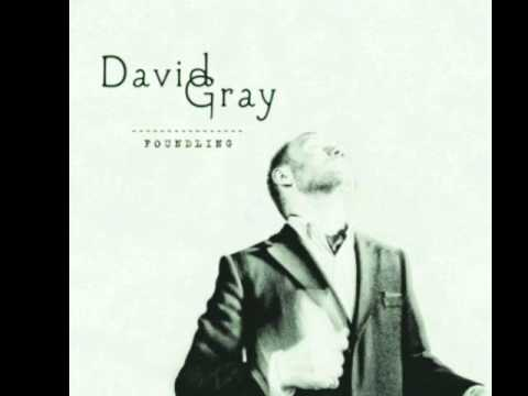Gray, David - We Could Fall In Love Again Tonight