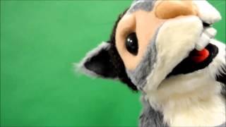 Custom Rapper Squirrel puppet, client update