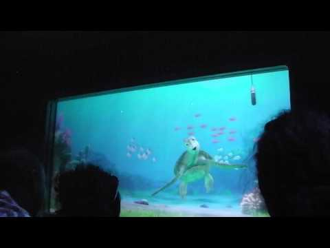 Turtle Talk With Crush (The Seas With Nemo &...