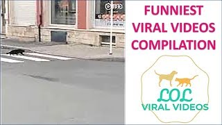 LOL VIRAL VIDEO (2) 14th Nov. 2018