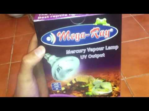 MegaRay UVA/UVB/HEAT Lamp 100 watt. Review / Unbox