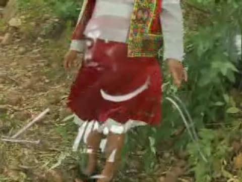 zapateadas cholita n7
