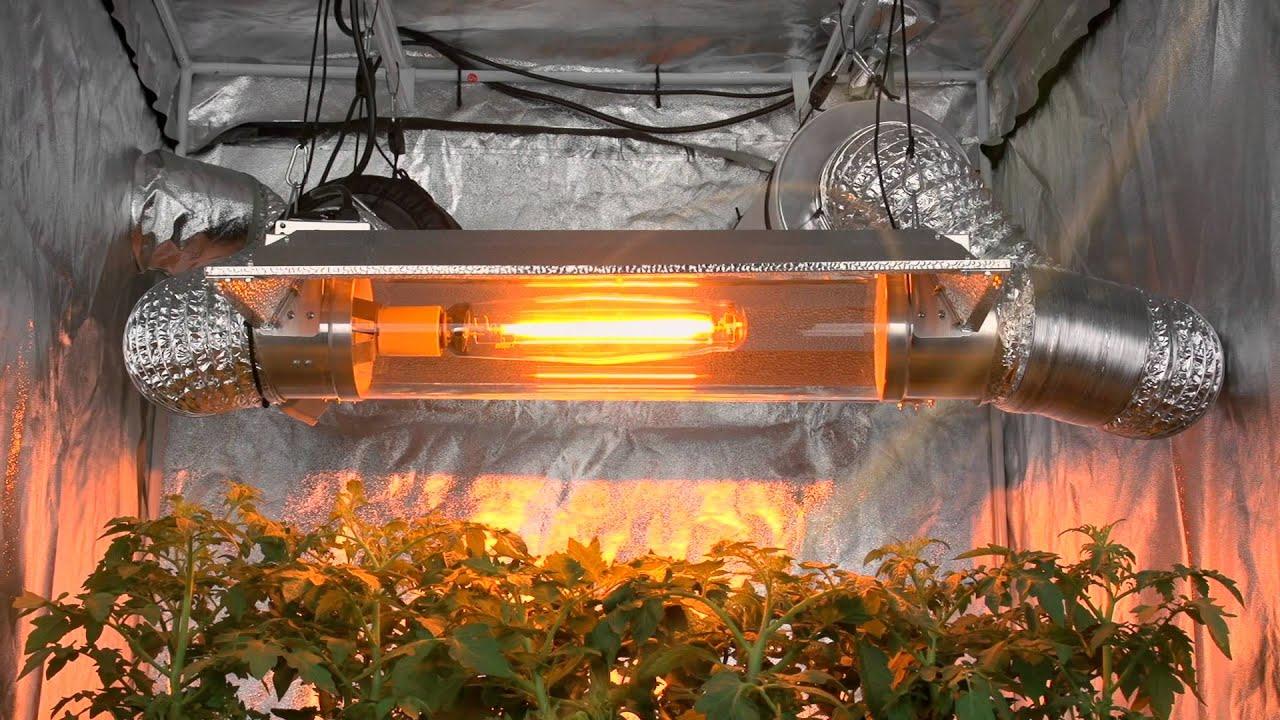 Светильники для гидропонных установок своими руками