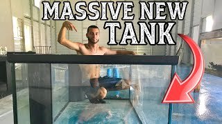 MASSIVE NEW TANK FOR MASSIVE NEW FISH GALLERY!