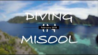 Diving in Misool, Raja Ampat, Indonesia [4K]