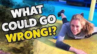 WHAT COULD GO WRONG!? #3 | Funny Weekly Videos | TBF 2019