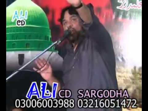Shaukat Raza Shaukat On Tahir Ul Qaadri video