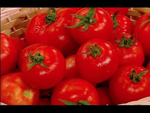 طريقة حفظ الطماطم في الثلاجة على طريقة الشيف #هاله_فهمي من برنامج #البلدى_يوكل #فوود