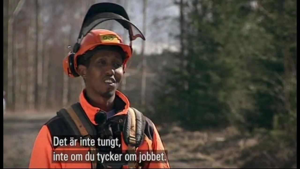 svensk till varje pris