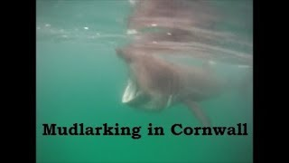 Mudlarking - from the River Thames to the Cornish Coast - basking shark and surfing!