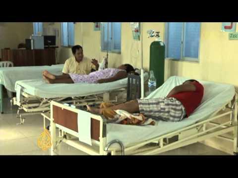 Dengue fever alert in Peru