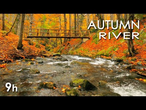 Autumn River Sounds -  Relaxing Nature Video - Sleep/ Relax/ Study - 9 Hours - HD 1080p