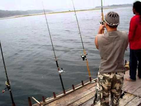 ตกปลากับจ่าเข็ม