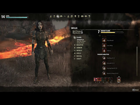 ESO - Dragonknight builds: all you need to know to get you started...