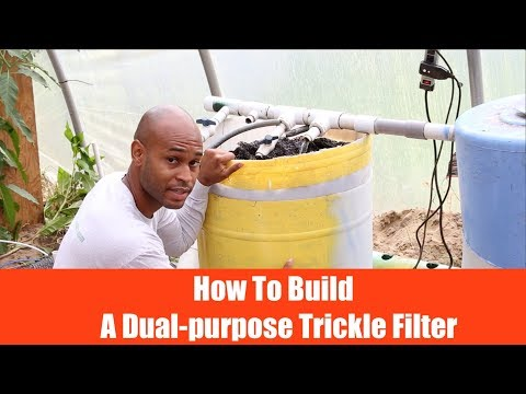 Aquaponics: How to buid a Dual-Purpose Trickle Filter