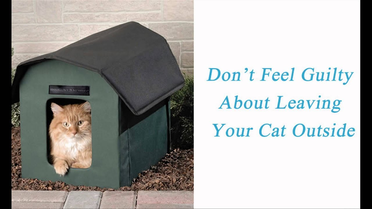 How To Make Your Outdoor Cat An Indoor Cat