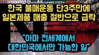 """한국 불매운동 단3주만에 일본제품 매출 절반으로 급락, """"아마 전세계에서 대한민국에서만 가능한 일"""""""