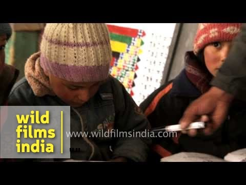 Ladakhi children learn about snow Leopard - Kashmir