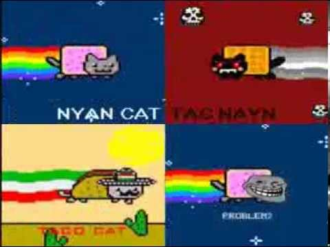 Nyan Cat And Taco Dog Nyan Cat vs Tac Nayn vs Taco