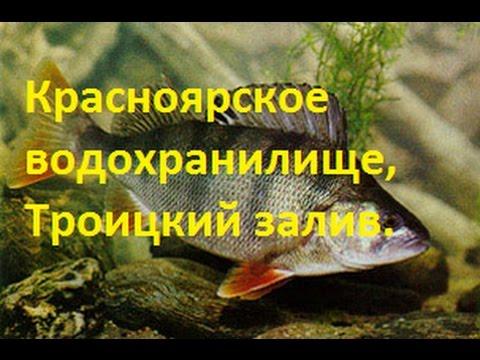 троицкий форум рыбаков