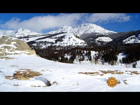 Nature: Yellowstone National Park